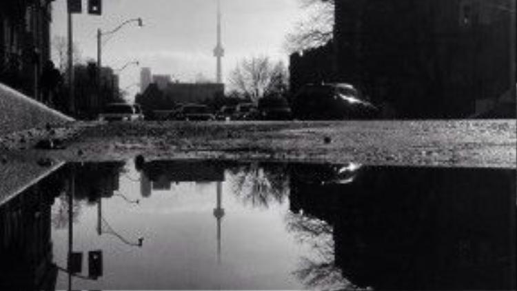 Vũng nước tạo ra một sự cân đối cho bức ảnh.
