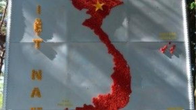 Bản đồ Việt Nam được làm từ hàng trăm nắp chai nhựa vứt đi.