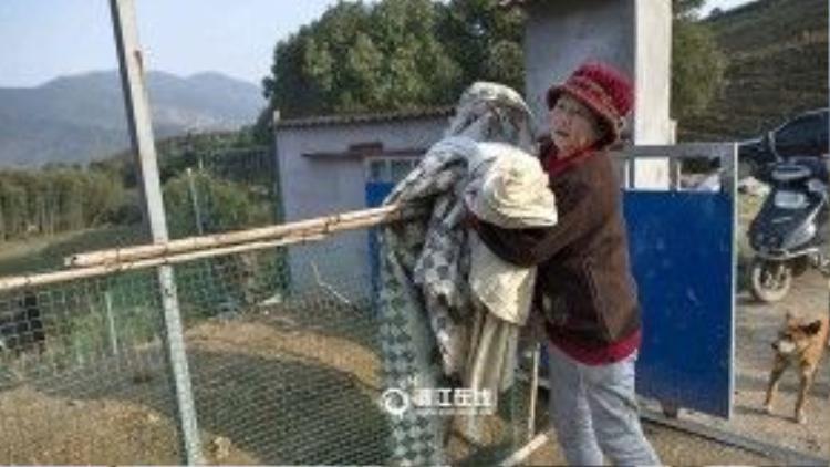 Bà Weng cho biết một ngày những con vật này ăn tới hơn 50 kg gạo. Bên cạnh đó, mảnh đất bà mua này có giới hạn sở hữu trong vòng 30 năm. Bà rất hy vọng khi bà già cả và qua đời, sẽ có người tốt bụng tiếp quản mảnh đất và công việc này.