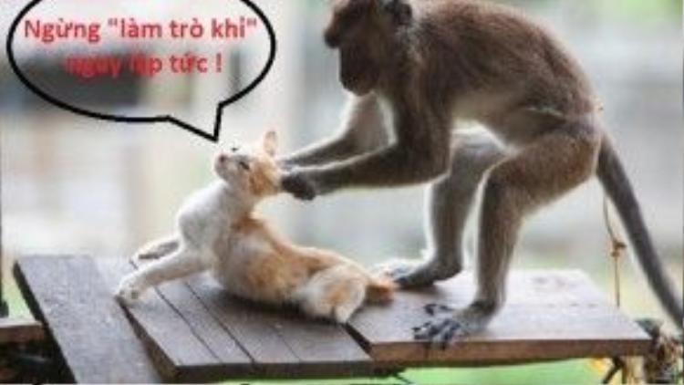 """Thành ngữ """"làm trò khỉ"""" dùng để chế giễu những người hay làm trò, tinh nghịch, trêu chọc người khác."""