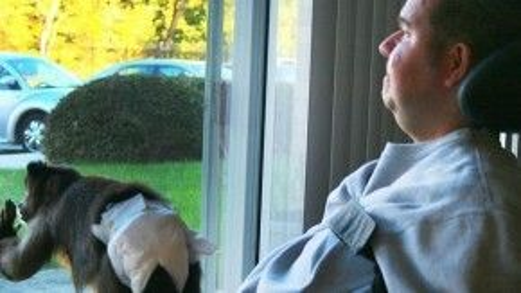 Anh Michael măc một chứng bệnh về cơ gây hạn chế khả năng vận động của anh. Với sự đồng hành của cô khỉ Kathy, Michael cảm thấy cuộc sống an toàn và độc lập hơn. Kathy giúp anh làm việc từ xa. Cô khỉ biết mở máy tính và máy in, lật trang sách cho Michael. Hai người bạn đặc biệt này đã ở bên cạnh và chăm sóc nhau được hơn 3 năm rồi.