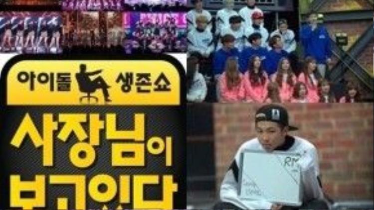 The Boss Is Watching là show mới chủ lực của đài SBS Tết năm nay. Chương trình gồm những khách mời như BtoB, BTS, Nine Muses, EXID, Lovelyz, Girlfriend, BAP,… họ tham gia cùng CEO của mình vào những trò chơi thể lực và trí tuệ, làm việc nhóm, tài năng cá nhân. v.v… Các CEO đối đầu trực diện với nhau để xem idol của ai là giỏi nhất. Những idol đứng đầu trò chơi (đấu vật, súng nước,…) có thể yêu cầu phần thưởng từ CEO của mình như ký túc xá tốt hơn, đồ gia dụng mới, ngay cả một chiếc tủ lạnh đầy thịt. Một số CEO còn tình nguyện chịu hình phạt thay cho idol của mình khi họ thua cuộc.