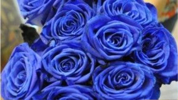 Hoa hồng xanh nhập khẩu Hà Lan cũng có giá từ 150.000 đến 250.000 đồng một bông.