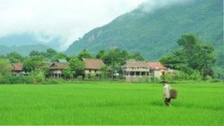 Mai Châu, Hòa Bình: Blog du lịch Willful And Wildhearted viết, Mai Châu là một vùng đất nằm ở miền núi phía Bắc Việt Nam, khu vực còn ít bị ảnh hưởng bởi nhịp sống đô thị như các thành phố lớn. Du khách có thể trải nghiệm cuộc sống đậm chất văn hóa cùng người dân nơi đây thông qua hình thức ở cùng nhà - homestay. Ảnh: Vietnamtips/Wordpress.