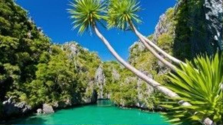 """El Nido, Philippines: Two Monkeys Travel Group cho biết El Nido là một trong những hòn đảo đẹp nhất Philippines và thế giới, """"một thiên đường hạ giới thực thụ"""". Do là một khu bảo tồn, El Nido vẫn giữ được vẻ đẹp nguyên sơ. Du khách có thể chèo thuyền kayak ngắm nhìn làn nước trong vắt và những rừng cây xanh tươi dưới nắng. Ảnh: Nationalgeographic."""