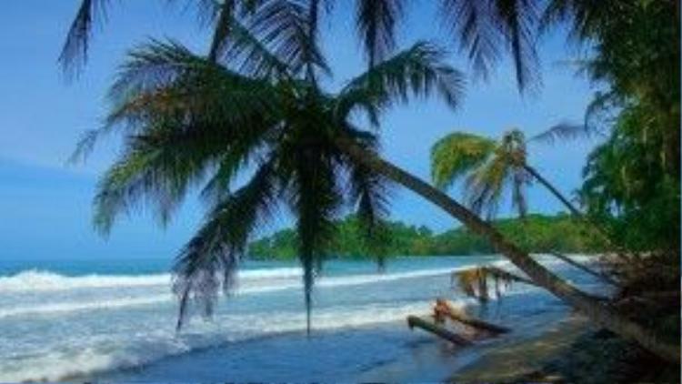 Punta Uva, Costa Rica: Theo Beck What The Hell, Punta Uva là một bãi biển tuyệt vời ở ngoại ô Puerto Viejo, Costa Rica. Đây là nơi lý tưởng để bơi lội, lặn biển và chèo thuyền kayak. Ảnh: Superbwallpapers.