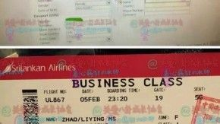 Triệu Lệ Dĩnh bay sang Maldives để du lịch cùng người yêu tin đồn.