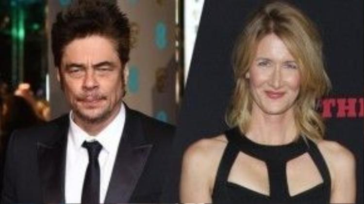 Benicio Del Toro và Laura Dern đều là những ngôi sao có tiếng từ lâu tại Hollywood. Ảnh: Shutterstock
