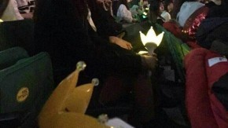 Thành viên Dara 2NE1 cũng có mặt để cổ vũ trong concert của tiền bối.