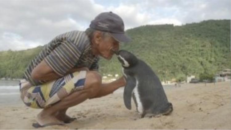 """""""Mọi người nói 'bé cụt' sẽ không quay trở lại đâu nhưng nó đã trở lại thăm tôi 4 năm qua"""", Joao cảm động chia sẻ."""