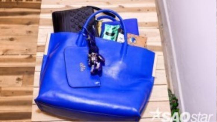Những vật bất ly thân của Lyskeli được đựng đầy cả một chiếc túi xách lớn mỗi khi cô ra đường.