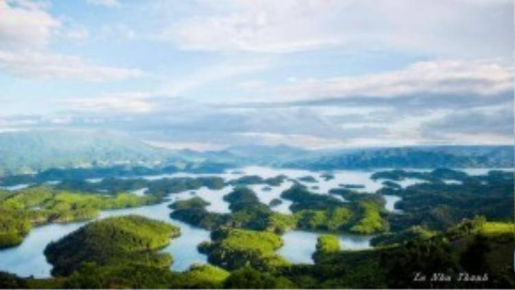 Ở độ cao trên 1.000m so với mực nước biển, khu bảo tồn cóđiều kiện khí hậu mát mẻ quanh năm nên động thực vật rất đa dạng và phong phú. Ảnh: Lê Như Thanh.