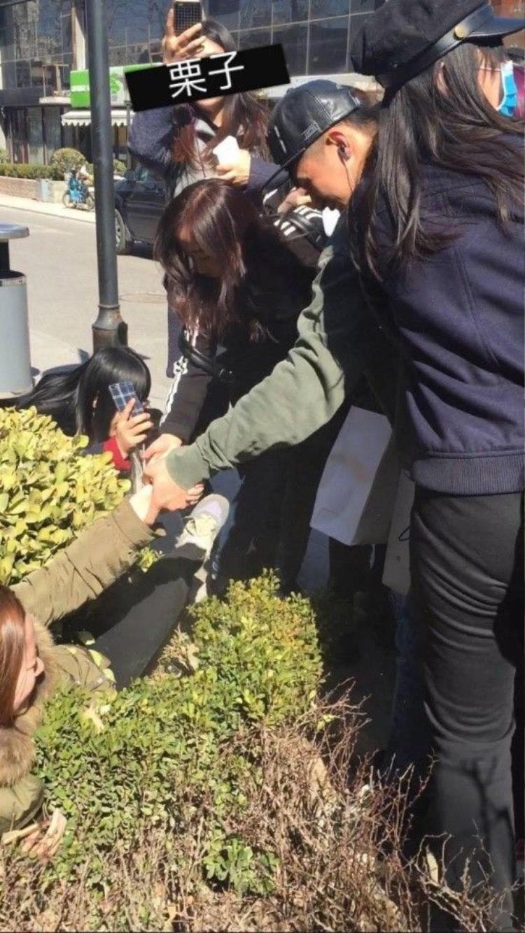 'Cố Hải' Hoàng Cảnh Du đỡ fan cuồng bị ngã vào bụi cây