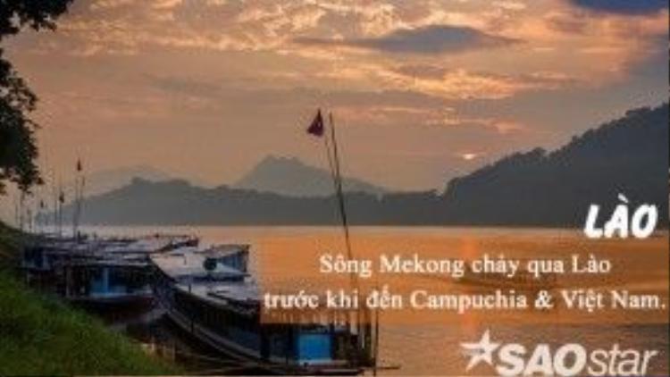 Bắt nguồn từ Trung Quốc, con sông Mekong chảy qua Lào, Myanmar, Thái Lan, Campuchia và đổ ra biển Đông Việt Nam theo hai nhánh sông Hậu - sông Tiền. Sông có chiều dài là 4.350km, đồng thời, cũng là con sông dài nhất khu vực Đông Nam Á. Đây cũng là quê hương của những loài cá da trơn khổng lồ như cá hô, cá mú, cá trê…