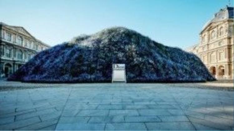 Đồi hoa phi yến khổng lồ của Dior