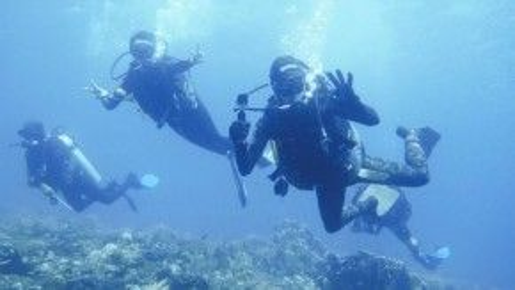Lặnđược chia làm hai nhánh là free dive (lặn tự do) và scuba (lặn có bình khí). Trong ảnh làlặn có bình khí.