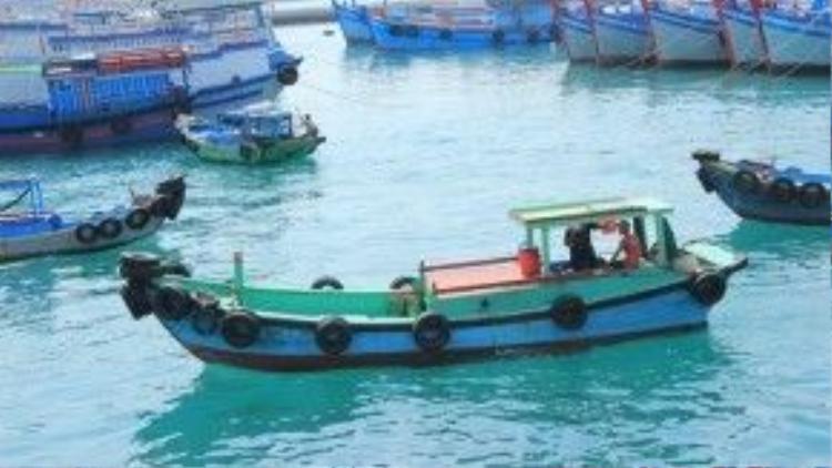 Phú Quý cách cảng Phan Thiết khoảng 120 km. Từ TP HCM, bạn có thể đi xe khách, tàu hỏa hoặc xe máy đến Phan Thiết, rồi đi tàu ra đảo. Thời gian di chuyển ra đảo khoảng 4 tiếng.