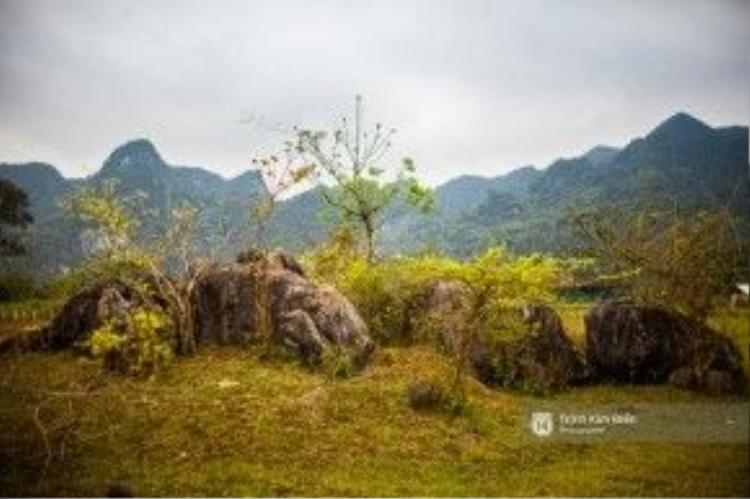 """Làng Yên Phú ( làng đá mọc) với những phiến đá vôi, thạch nhũ """"mọc"""" lên từ mặt đất."""