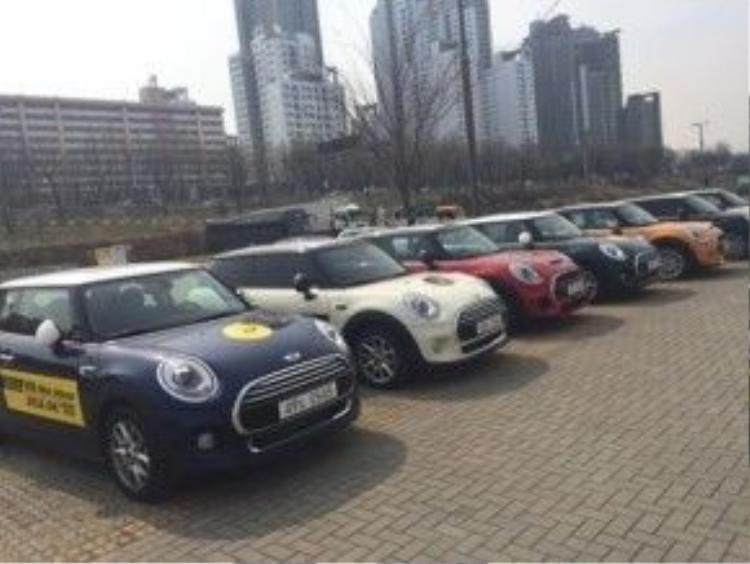 Đoàn xe Mini Cooper hoành tráng.