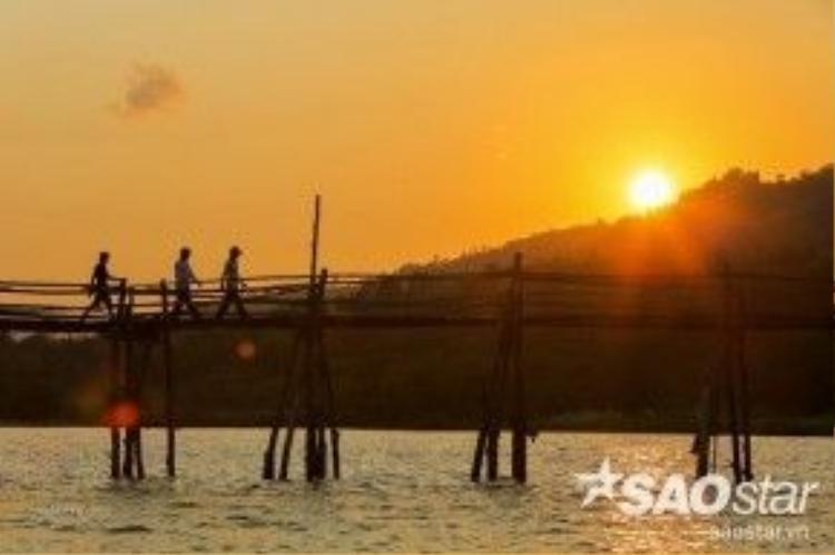"""Hiện nay, cầu Ông Cọp là một trong những cây cầu gỗ hiếm hoi còn lại của tỉnh Phú Yên. Thế nên, vì lo sợ một ngày không xa cây cầu sẽ bị """"xóa sổ"""", nhiều phượt thủ đã nhanh chân tìm đến và ghi lại những khoảnh khắc cùng các trải nghiệm khó quên tại nơi này."""