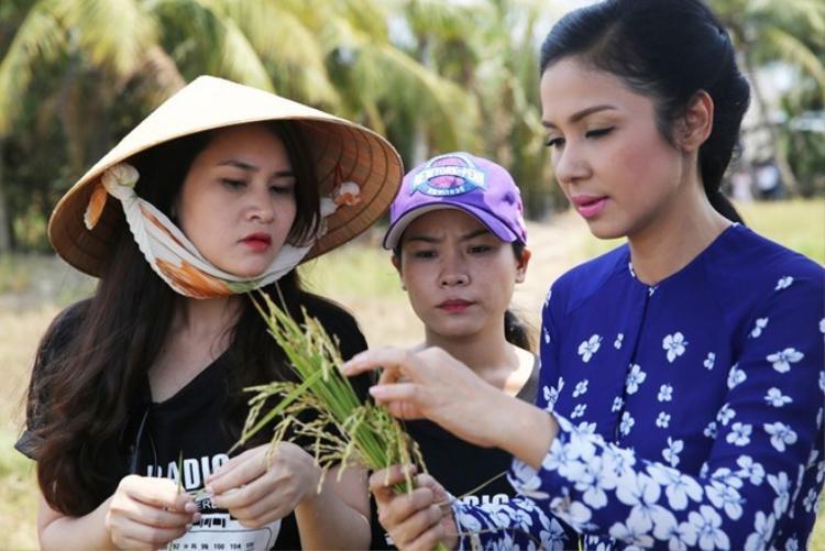 Việt Trinh mặc áo bà ba, đội nắng xách nước thăm ruộng ở miền Tây