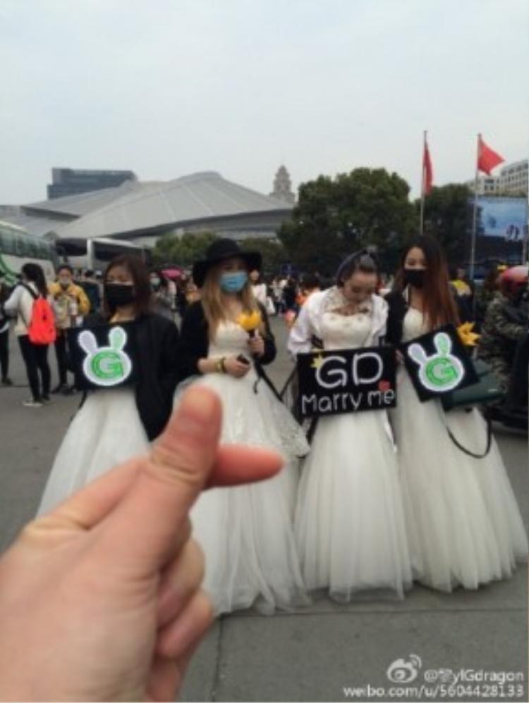 Người hâm mộ Big Bang có mặt trước giờ tổ chức.