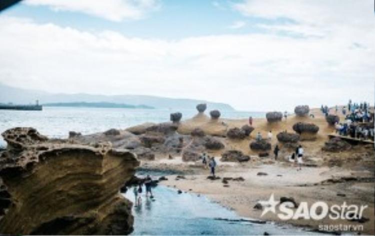 Hàng chục mỏm đá đủ mọi hình thù tập trung tại khu vực ven biển của công viên. Nơi đây được đánh giá là một dạng địa chất kỳ lạ, được hình thành khi lớp vỏ trái đất vận động mạnh, kết hợp cùng sự xói mòn của biển và gió trong suốt 10 - 25 triệu năm trước.