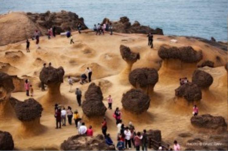 """Bên cạnh viện """"triển lãm thiên nhiên"""" độc đáo này, du khách đến Yehliu còn có thể tham quan những hang động xung quanh hoặc tắm biển. Ngoài ra, Bảo tàng khoa học và kĩ thuật Hải Dương (National Museum of Marine Science & Technology), một địa chỉ nằm cùng trục đường đến Yehliu, cũng nhận được nhiều sự quan tâm của du khách."""