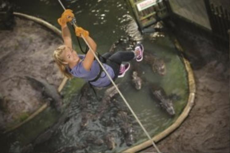 Trượt cáp qua hồ cá sấu, Mỹ: Điểm tham quan độc đáo ở Sở thú Trại cá sấu St. Augustine, Florida, Mỹ, cho du khách cơ hội ngắm nhìn các loại cá sấu từ trên cao. Tại đây, du khách sẽ được chiêm ngưỡng những con cá sấu Mỹ, châu Phi và Ấn Độ. Ảnh:Daily Mail.