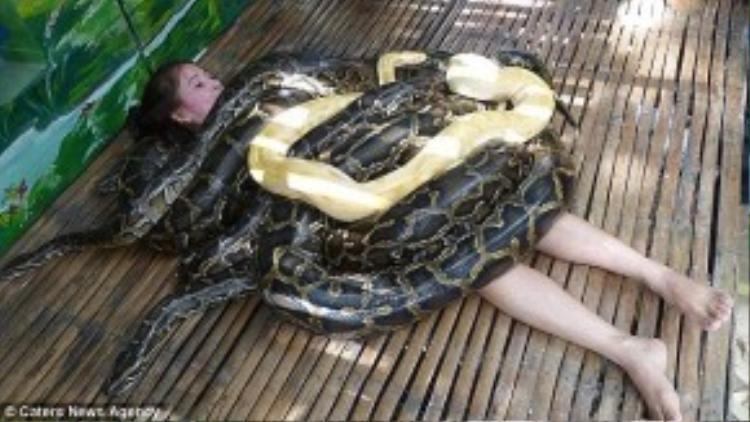 Massage bằng trăn, Philippines: Không gì tuyệt bằng được massage thư giãn sau một ngày tham quan mệt mỏi. Tuy nhiên, không phải ai cũng đủ can đảm thử tay nghề của các nhân viên massage đặc biệt này - những con trăn Burma khổng lồ. Ảnh: Daily Mail.