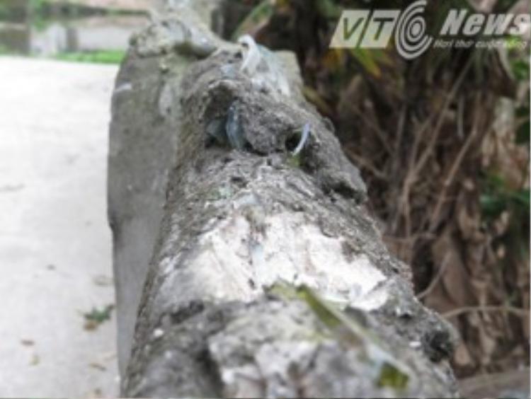 Bờ tường nơi ông Khá bị mảnh chai đâm.