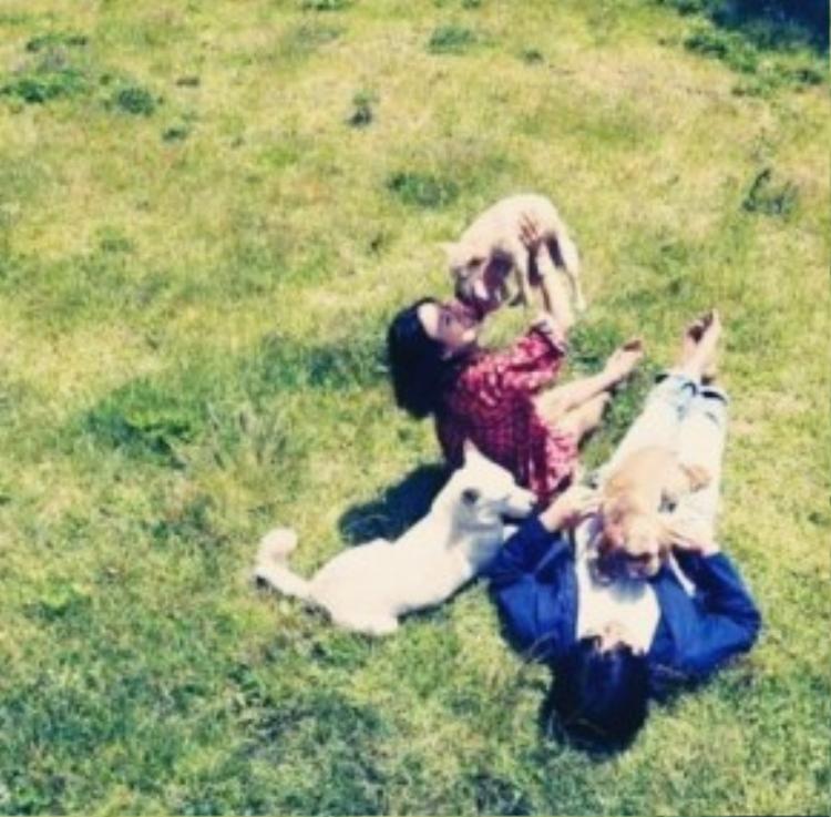 Hyori hiện đang cùng chồng trải qua những tháng ngày hạnh phúc viên mãn, giản đơn bên đàn cún dưới một mái nhà.