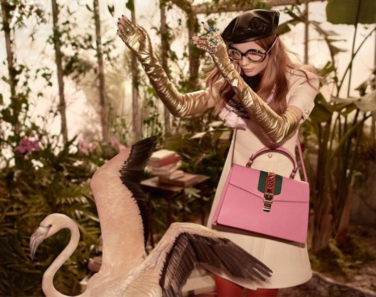 Ngắm Gucci và khu vườn hồng hạc trong chiến dịch Pre-fall 2016
