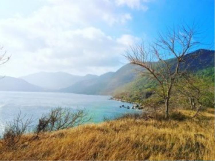 Trên cung đường vòng quanh Côn Đảo, bạn có thể ghé thăm nhiều đồng cỏ úa ngay sát biển với vẻ đẹp có thể so sánh với các quần đảo nổi tiếng trên thế giới.