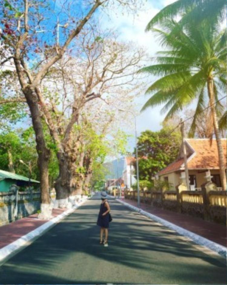 Một trong những nét đẹp đáng để trải nghiệm nhất của Côn Đảo là cung đường đèo ven biển uốn lượn quanh hòn Côn Lôn (Côn Đảo - đảo chính).