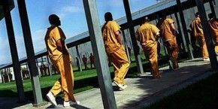 """Trong báo cáo của National Detention Watch Network, Theo Lacy """"không phải là nơi dành cho con người""""."""