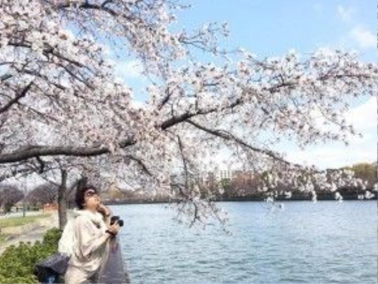 Blogger Esheep đã có một chuyến du xuân Nhật Bản với nhiều kỷ niệm vui và đáng nhớ. Ảnh: FBNV