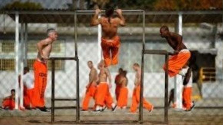 Các hoạt động đa dạng trong tù.