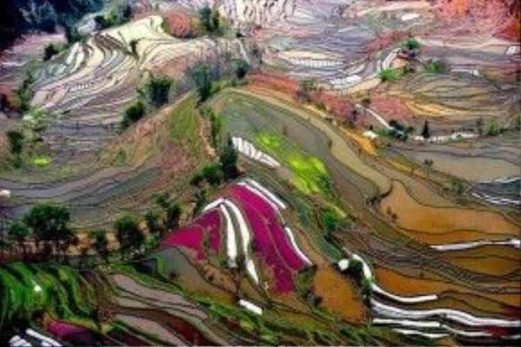 Là Là một di sản văn hóa thiên nhiên thế giới do UNESCO công nhận, ruộng bậc thang của người Hà Nhì tại Hồng Hà được coi là một trong những nơi người yêu thiên nhiên phải đến một khi đã tới Trung Quốc.