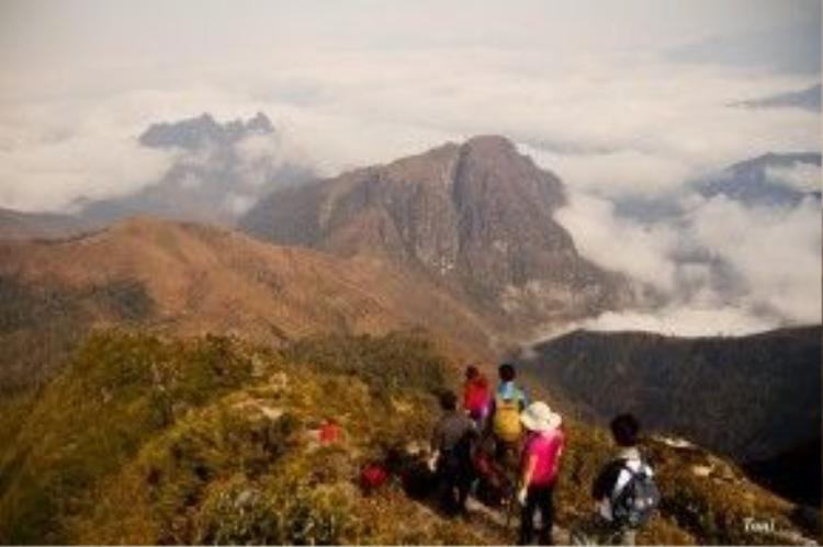 Chặng đường từ 2.800 m lên đến 3.046 m, ai nấy đều mệt và khá đuối sức, đi một chút lại nghỉ một chút. Nhưng cả đoàn cần mẫn xuyên rừng trúc, xuyên qua những cánh rừng già, bò trên những vách đá đầy rêu trơn trượt cần mẫn để đến được đỉnh cao nhất 3.046 m.