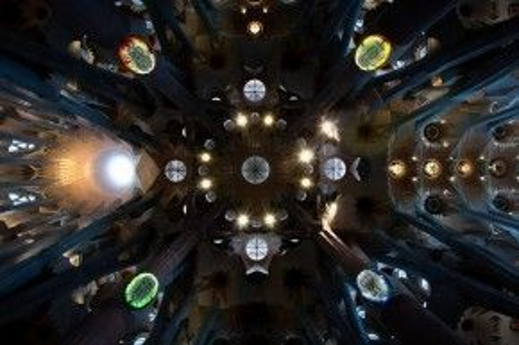 Trần của đền thờ Sagrada Familia, Barcelona, Tây Ban Nha.