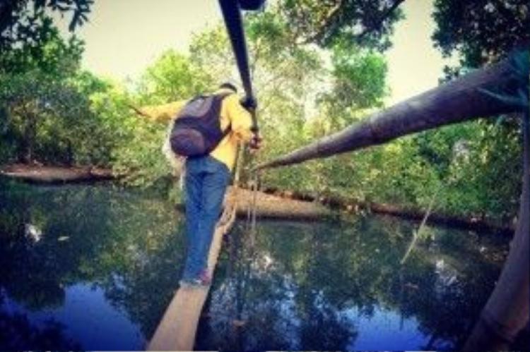 Trải nghiệm đi cầu khỉ lắt lẻo…