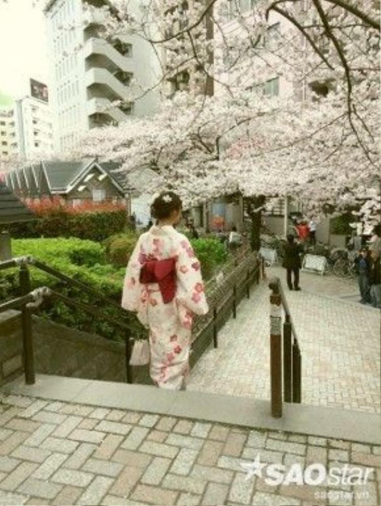 Ở Asakusa, vào mùa này đâu đâu cũng thấy sắc hồng trắng dịu ngọt của hoa anh đào nên góc nào cũng dễ dàng trở thành bối cảnh để bạn có một bức hình ưng ý. Chỗ thuê đồ cũng có cho gửi đồ miễn phí nên bạn không cần phải tay xách nách mang, lỉnh kỉnh hàng tá vật dụng đâu!