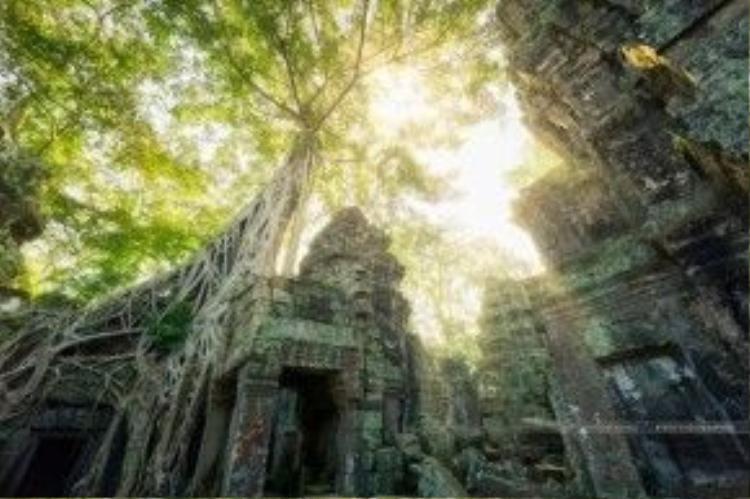 Trong ánh nắng ngập tràn của mặt trời, các phế tích ấy vẫn có nét thu hút rất riêng, đầy hoang sơ, đầy quyến rũ.