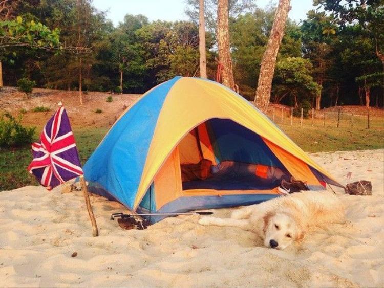 Chuyến du lịch của chú cún và 9x Việt minh chứng: Bạn gái không có, nhưng chó nhất định phải có một con!