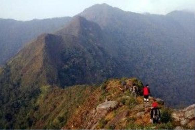 """""""Sống lưng khủng long"""" trên đỉnh Tà Xùa trong một ngày quang mây. Ảnh: Lê Bảo Linh."""