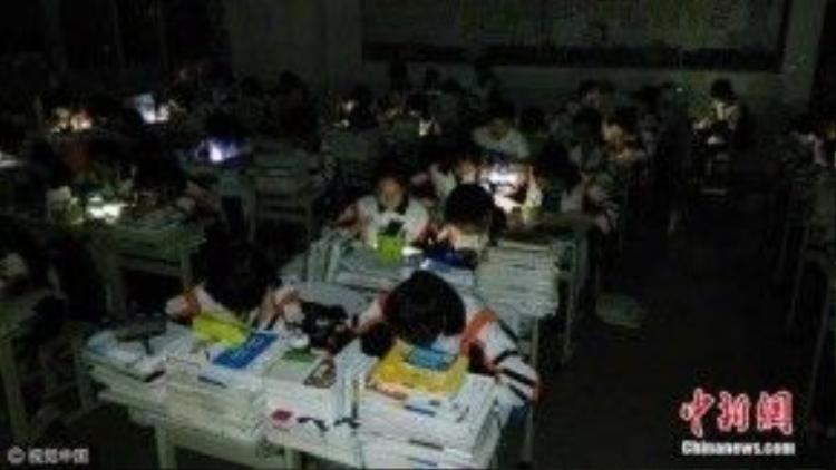 Hơn 600 học sinh trường THPT Quý Châu sử dụng điện thoại để học