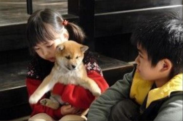 Cô bé Aya Ishikawa (Mao Sasaki) và anh trai Ryota Ishikawa (Ryohei Hirota ) cùng chú chó Mari lúc nhỏ