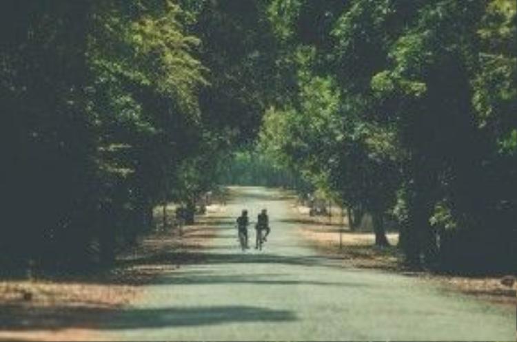 Con đường tới đền Taprom đem lại cảm giác thanh thản và yên tĩnh.