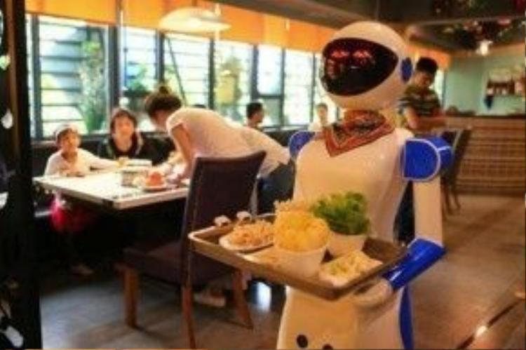 """Nhiều rô bốt được sản xuất để phục vụ tại các nhà hàng Trung Quốc đã bị """"sa thải"""" vì """"không đủ năng lực""""."""